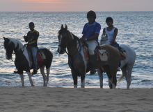 Horse-back-Riding-in-Kalpitiya-Sri-Lanka2