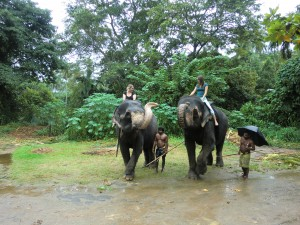 Sri-Lanka Elephant Ride