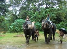 Sri-lanka Elephant Ride