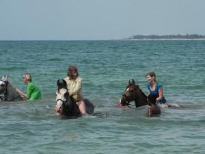 Riding horses into the ocean!