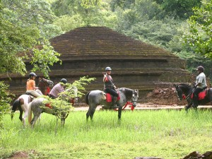 Riding past an ancient site in the jungle near Sigiriya!