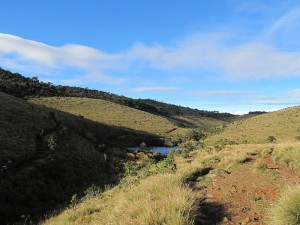 Trekking in the Horton Plains National Park.